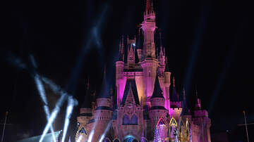 Brooke Morrison - Walt Disney World Just Purchased 235 Acres Of Land Near The Parks
