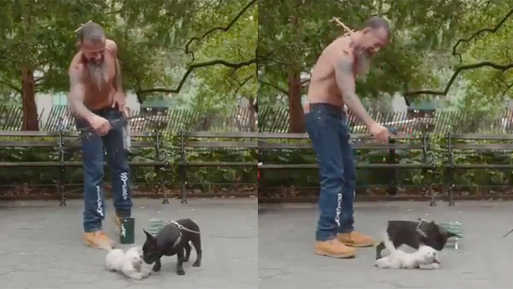 Dog Puppeteer Is So Good He Fools A Real Dog | iHeartRadio