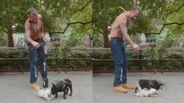 Trending - Dog Puppeteer Is So Good He Fools A Real Dog