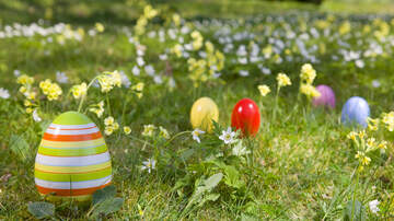 image for Newark's Annual Egg Hunt