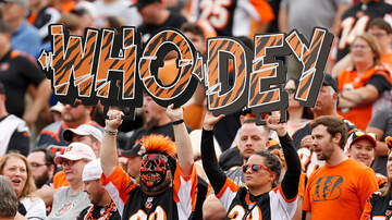Lance McAlister - Letter: 47-year Bengals season ticket holder explains difficult decision