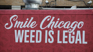 Brooke Taylor - Chicago Travelers Can Dump Pot In 'Cannabis Amnesty Boxes' Before Flying