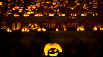 Carolyn McArdle - New Bill Would Make Day After Halloween A School Holiday In Florida!