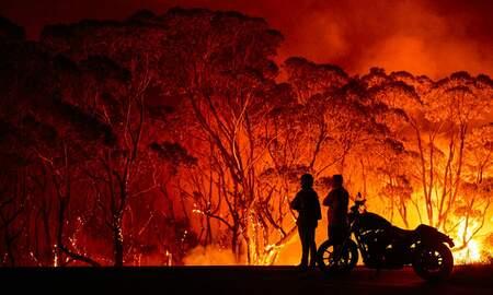 Ron Wilson - Australia is on fire