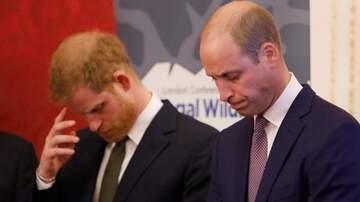 Savannah - Prince Harry & Prince William Issue Joint Statement Amid Royal Turmoil