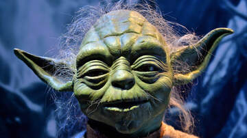 Crystal Rosas - Baby Yoda Will Be Coming to a Build-A-Bear Soon!