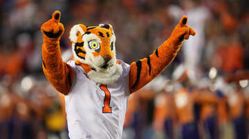 The Bottom Line - Something Is Up With The Clemson Mascot