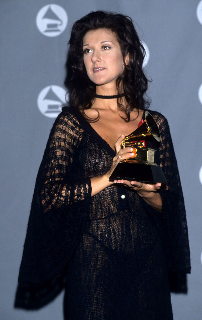 The 35th Annual GRAMMY Awards