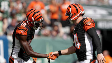 Lance McAlister - The Bengals and the plan for AJ Green and Andy Dalton