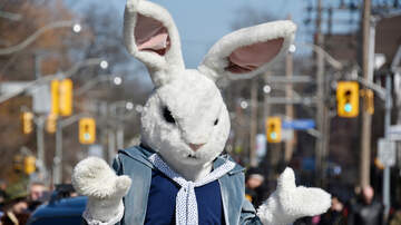 Big Mad Morning Show - Easter Bunny Arrested After Hit-N-Run