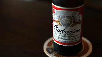 Charlotte News - Charlotte's 2016 Protests Seen in New Budweiser Ad