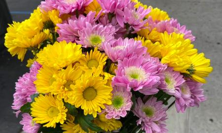 Ryan Seacrest - Viral Kobe Bryant Fan Shares Touching Moment With Florist: Listen