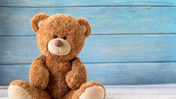 Amy James - Build-A-Bear Is Selling Girl Scout Cookie Bears That Smells Like Cookies