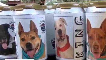 image for After Three years of her dog missing, she sees a picture on a beer can!