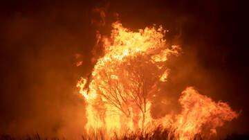 image for Dashcam captures AMAZING SPEED of Australian Bushfire