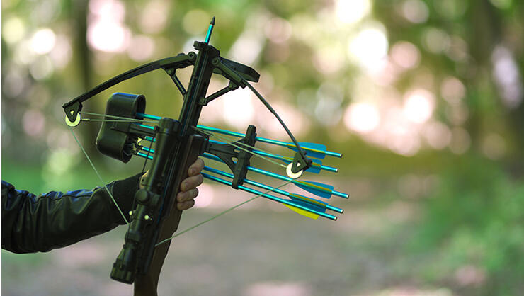 Hand holding crossbow, in the nature