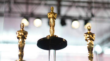 image for 2020 Oscars Complete List of Winners