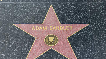 image for Adam Sandler Best Male Lead Speech