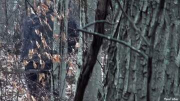 image for Watch: Bigfoot Filmed in Ohio?