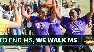 image for Walk MS 2020