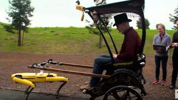 image for Adam Savages' Robotic Rickshaw!