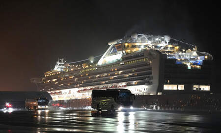 image for 14 Americans Evacuated From Cruise Ship Test Positive For Coronavirus