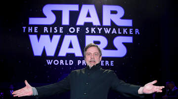 image for Mark Hamill Is The New Skeletor