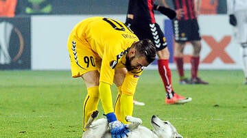 image for Another Dog Story?! YES! Pooch Interrupts Turkish Soccer Game!