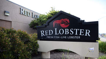 image for UPDATE: Red Lobster's Cheddar Bay Biscuits ARE STILL UNLIMITED