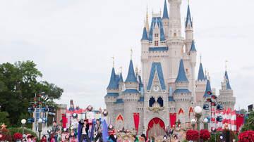 image for ¿Walt Disney World En Orlando Están Renovando El Castillo De Cinderella?
