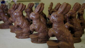 image for White Chocolate Easter Bunnies Packed With Froot Loops Exist For Easter