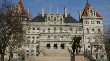 image for Interviews with Brian Manktelow, Tom Mettler, and Angi Renna for NYS Senate