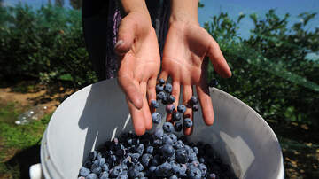 image for Wellness Shot: Blueberries Are Good For Your Heart