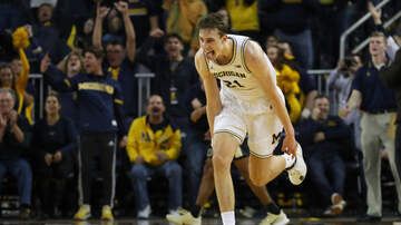 image for PODCAST: 2-24-20 SHOW (Michigan Hoops Resurgence & Red Wings Rebuild)