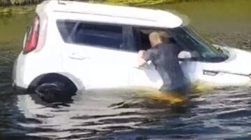 image for Cell Phone Video Captures Florida Man Rescue Driver From Sinking Car