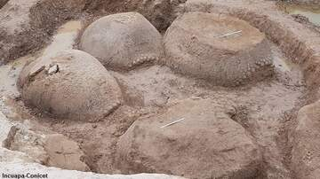 image for Massive Ancient Armadillo Shells Unearthed in Argentina