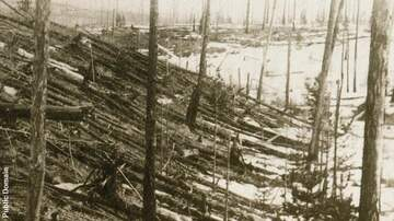 image for Russian Scientists Search for 'Cosmic Matter' Near Site of Tunguska Blast
