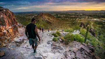 image for City of Phoenix limiting access to hiking trails starting this weekend