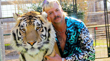 image for 'Tiger King' Star Joe Exotic Is In Coronavirus Quarantine In New Prison