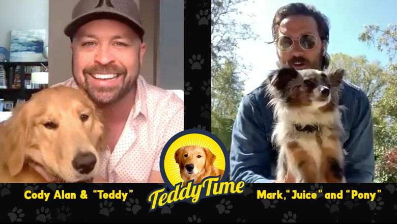 Teddy Time: Midland's Mark Wystrach Drops In For Virtual Puppy Playdate