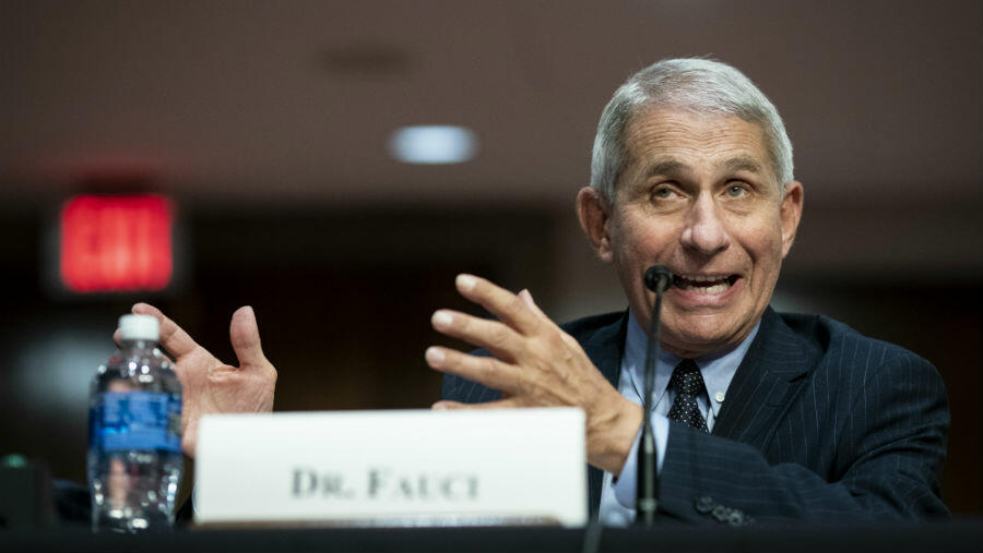Dr. Anthony Fauci Says U.S Is 'Knee-Deep' In First Wave Of COVID-19 Cases