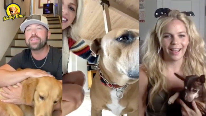 Teddy Time: Runaway June's 'Pawfect' Playdate