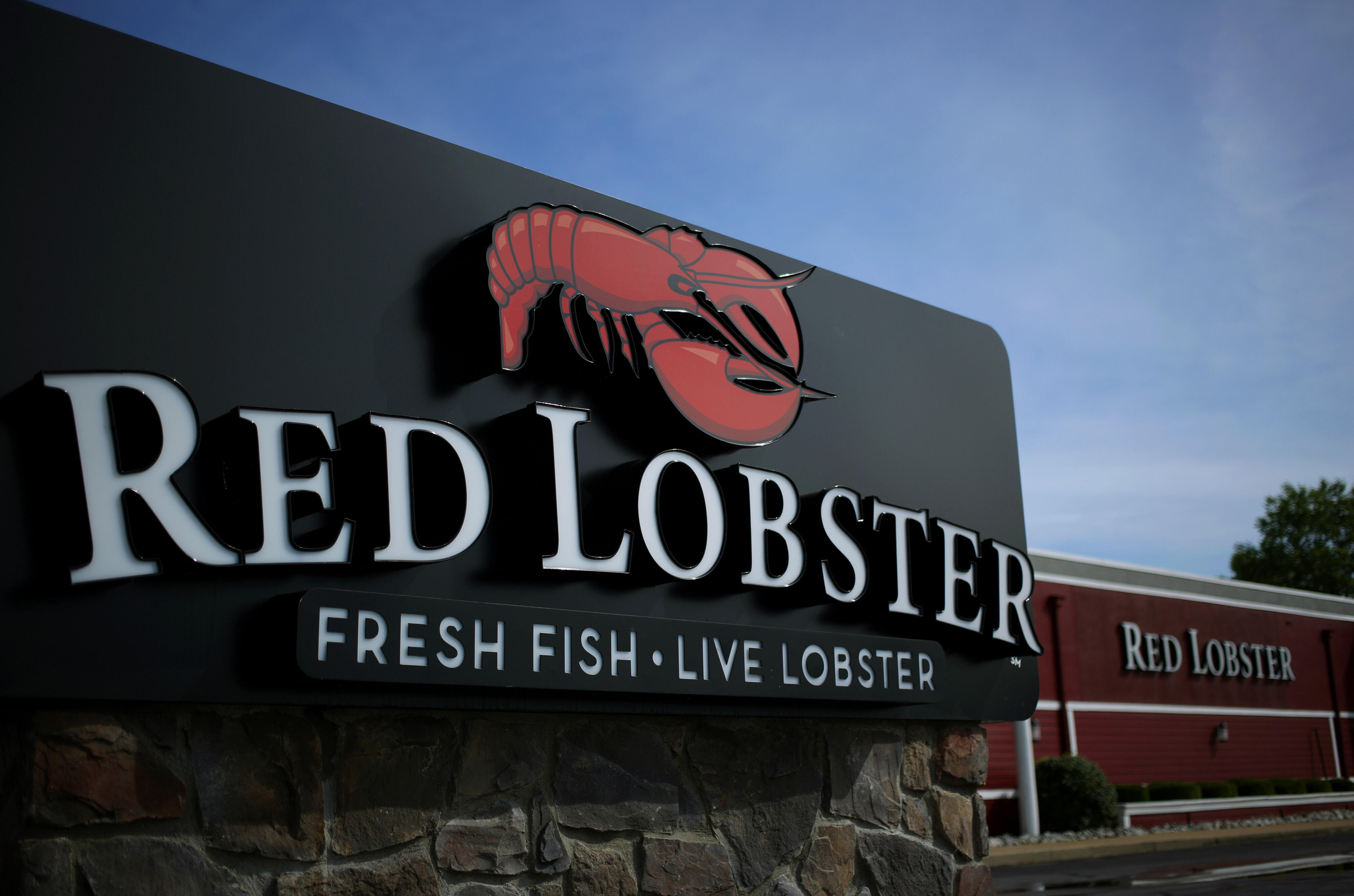 Red Lobster Will Tell You What Type Of Shark You Are Based On Your Order