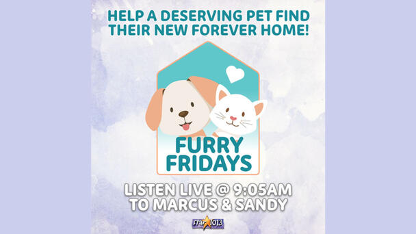 Join Us Every Friday For Furry Friday's With Marcus & Sandy!