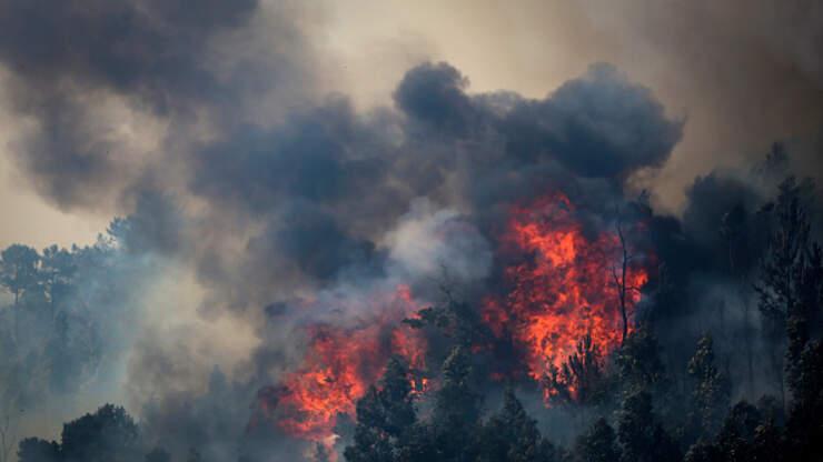 Brush Fire Starts At San Jose Alum Rock Park