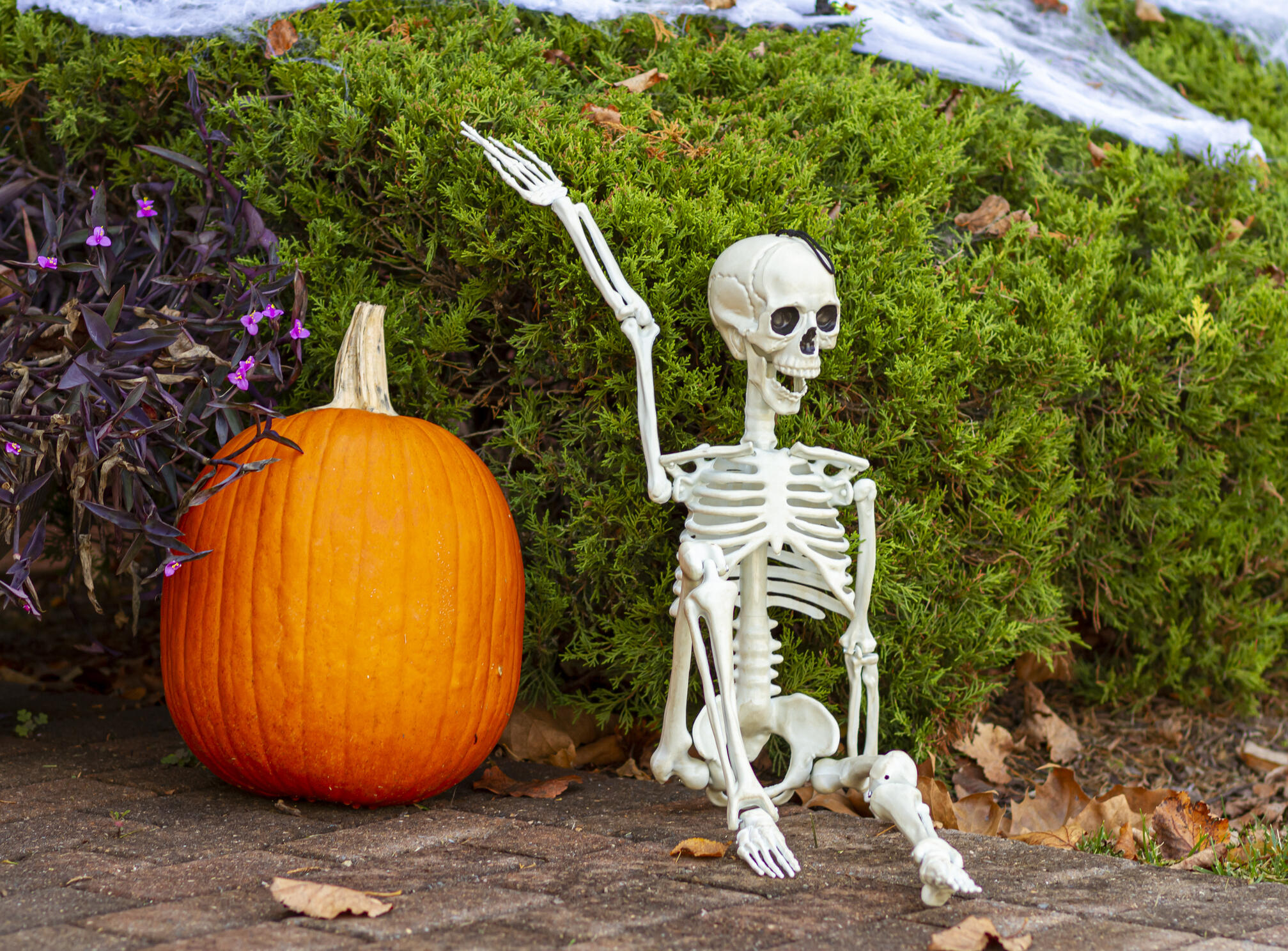 People Are Turning Their Home Depot Skeletons into Christmas Decorations