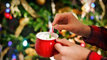 image for Make Your Own Hot Chocolate Bombs!