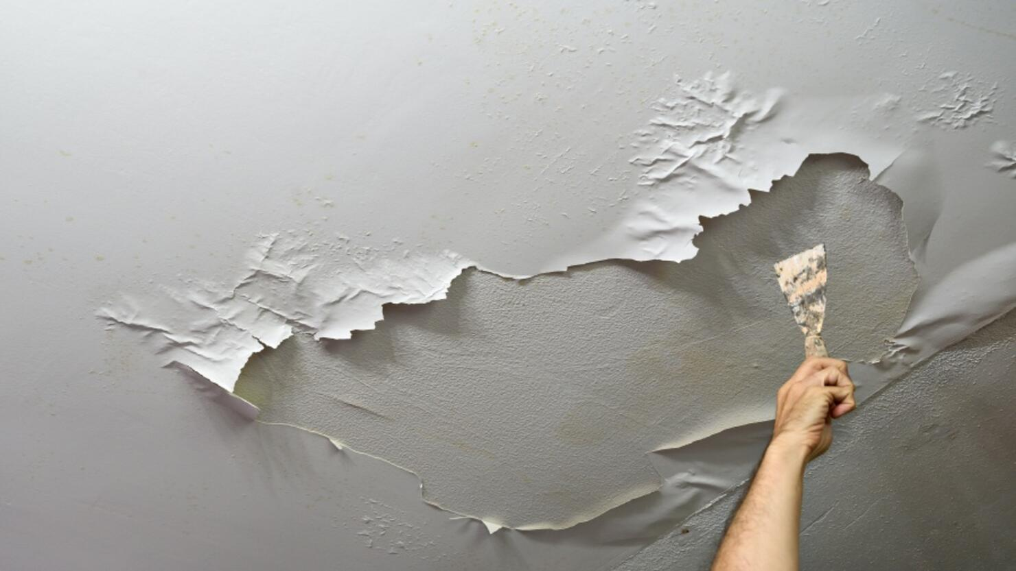Man´s hand holding a spatula in his hand, pointing to the ceiling in which the paint has been peeled off by moisture. Plumbing work at home