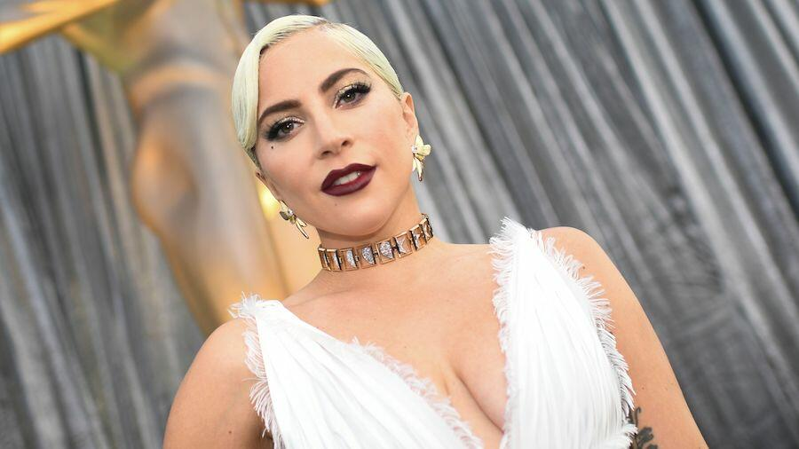 Lady Gaga Dognappers' Terrifying Plan Of Attack Revealed