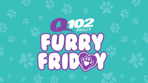Meet the Q102 Furry Friday Pet Of The Week!